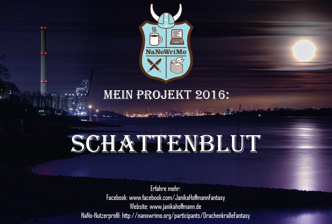 NaNoWriMo 2016 _ Mein Projekt